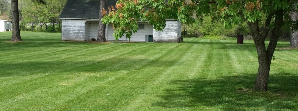 Best Quality Lawn Care Services