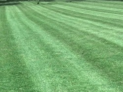 EverGreen Lawn Care Ridgway, IL